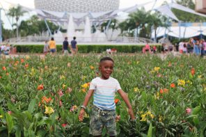 Things to do at Walt Disney World With A Preschooler
