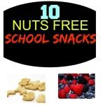 10 nuts free school snacks