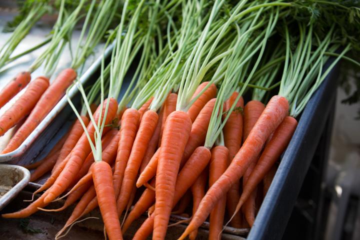 happy-family-carrots