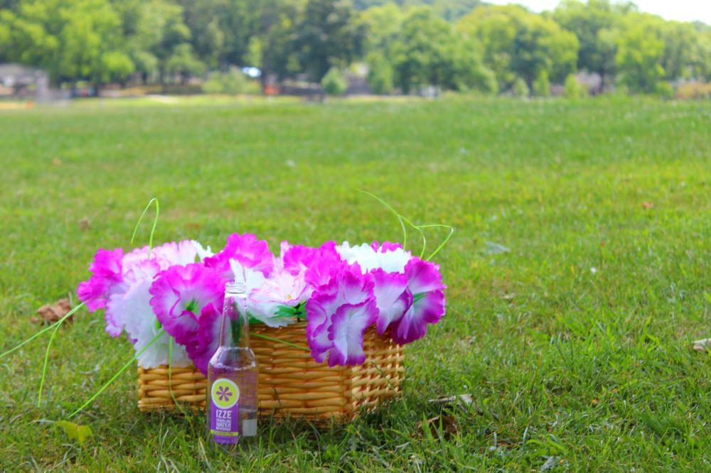 picnic-basket-hacks