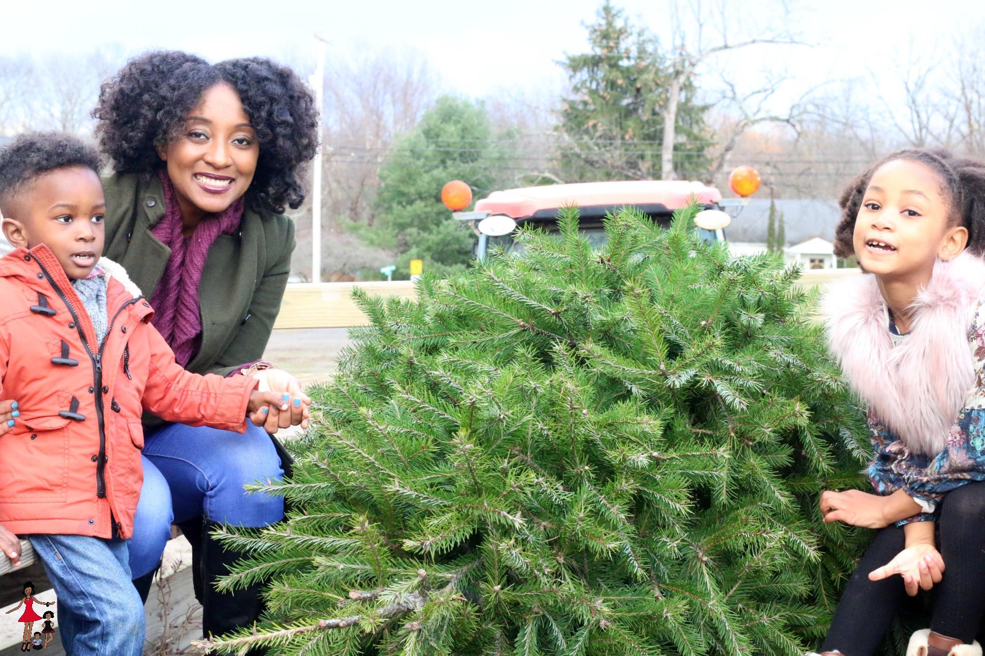 christmas-tree-picking