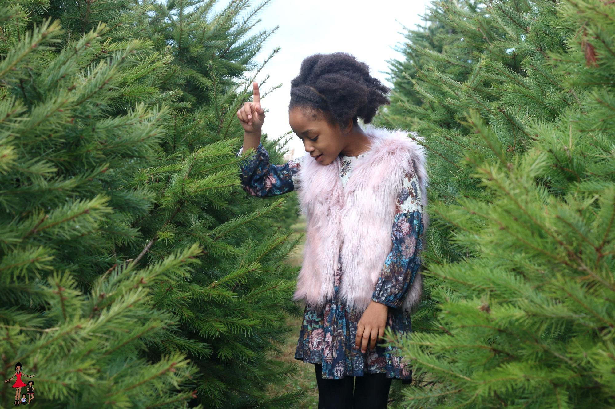 christmas-tree-farm-2