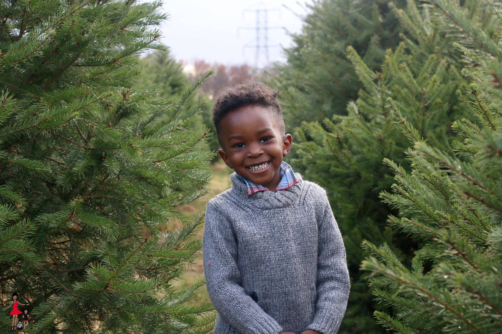christmas-tree-farm-family-photos