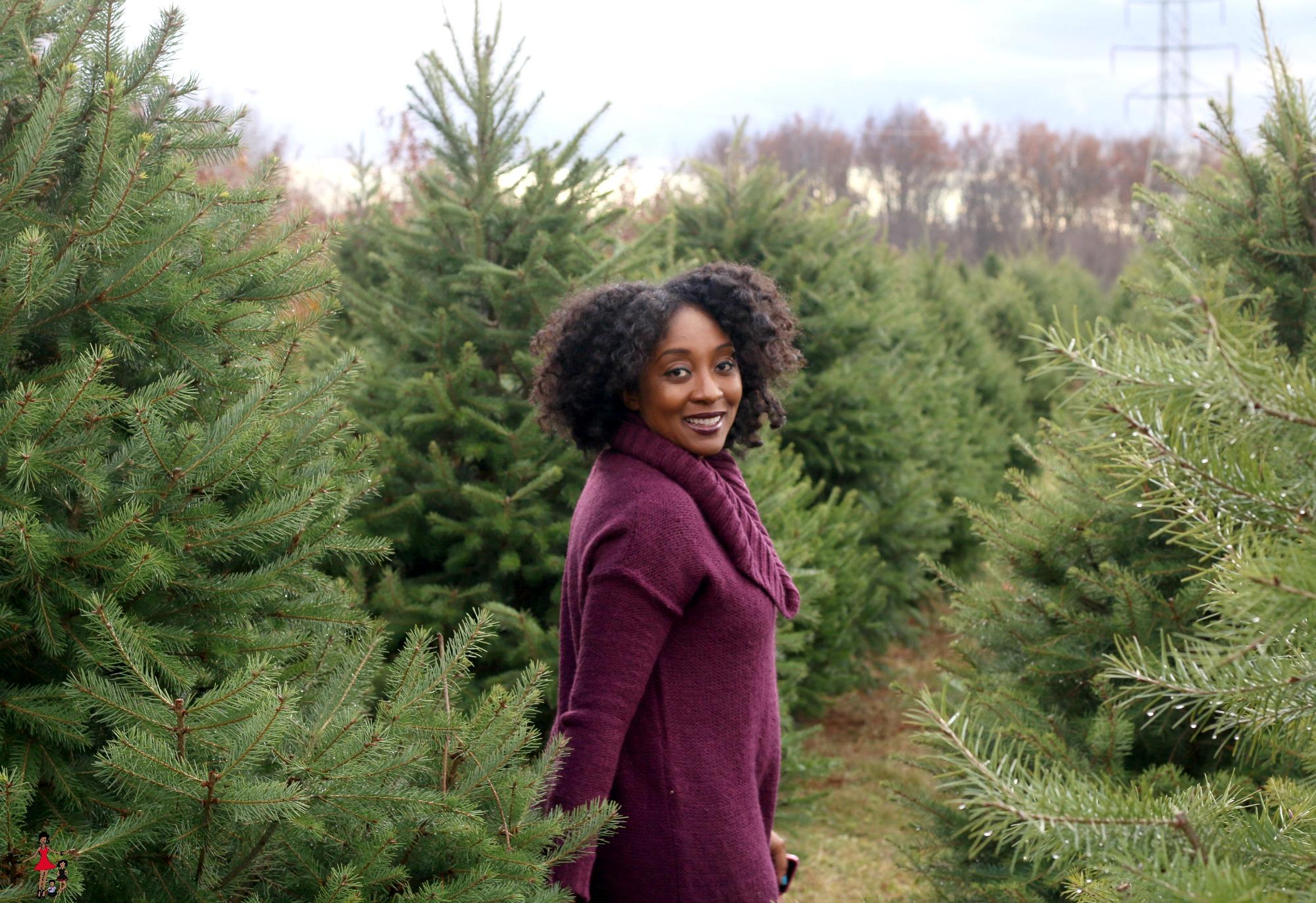 ny-state-christmas-tree-farm