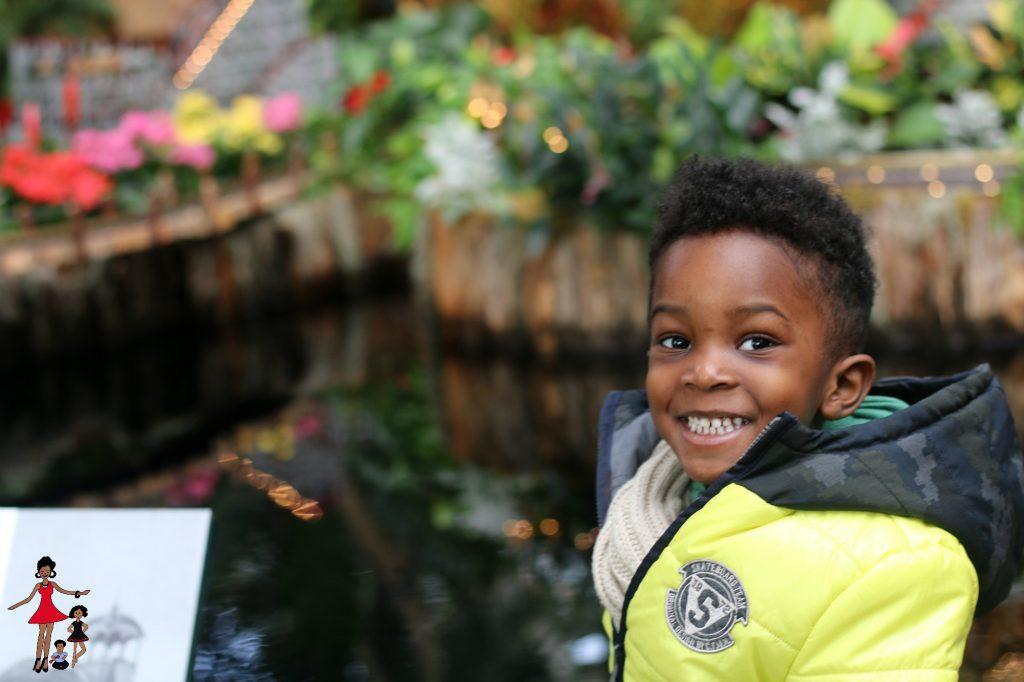 NY-Botanical-Garden
