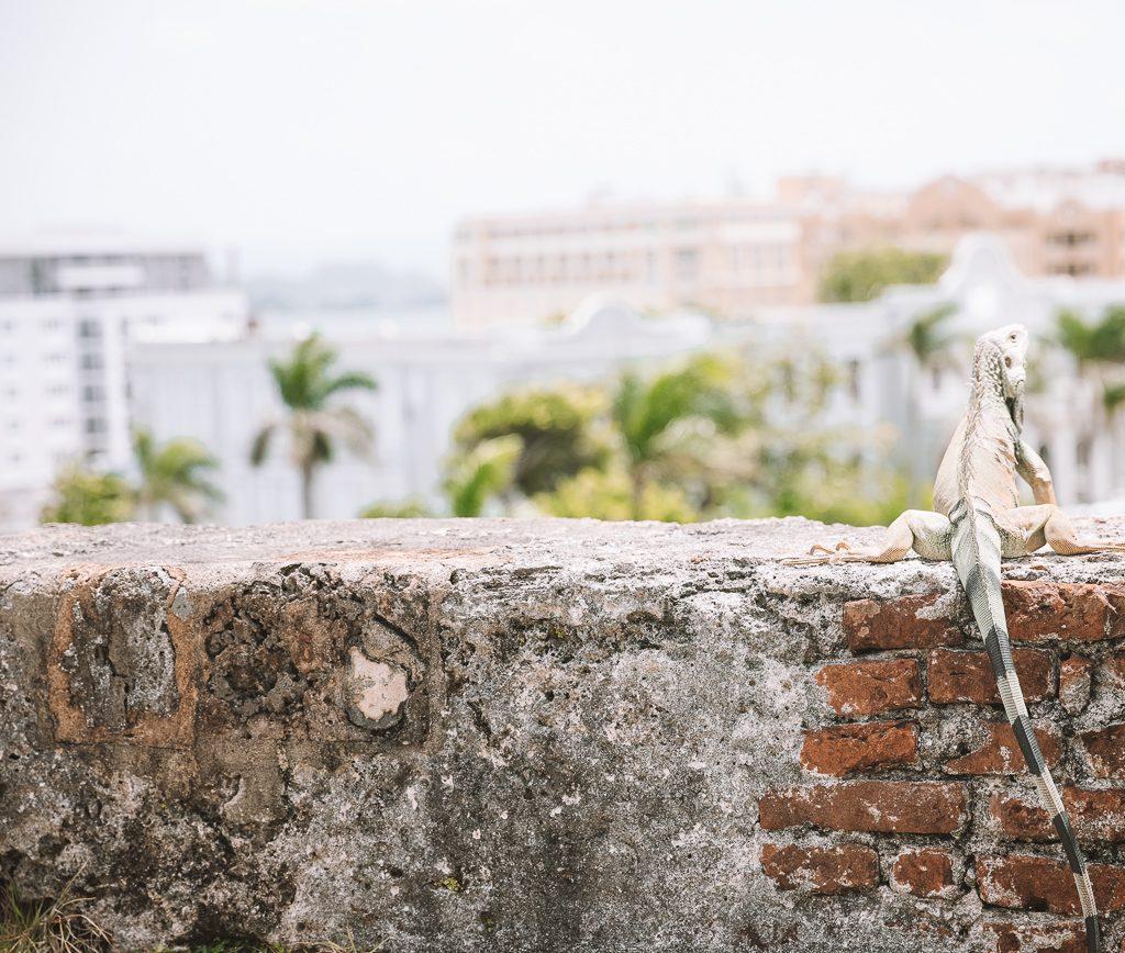 things to do Old San Juan, Puerto Rico