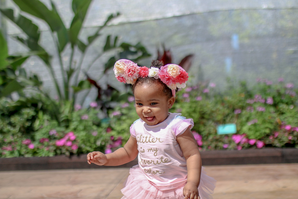 A Guide to Walt Disney World with Toddlers: Tips and Attractions