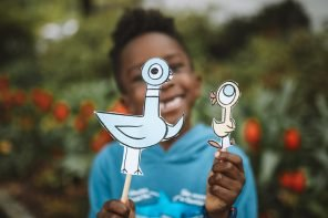 Easy DIY Mo Willems Pigeon Puppets