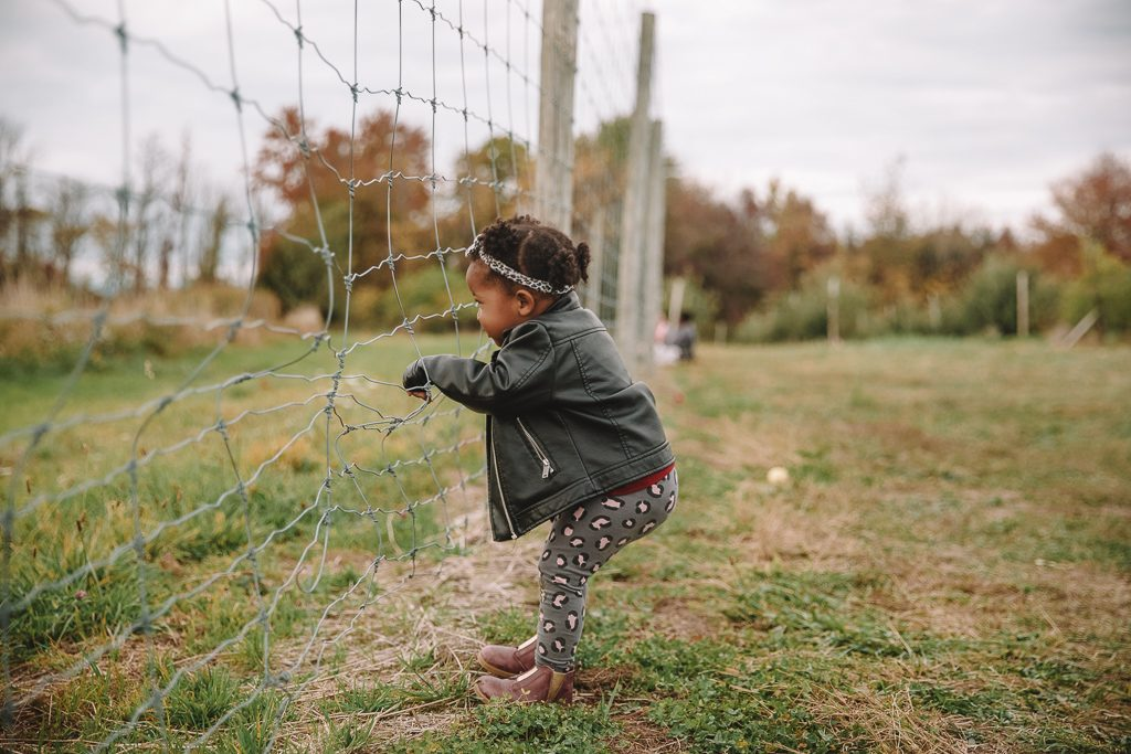 Toddler at farm | Rattles and Heels